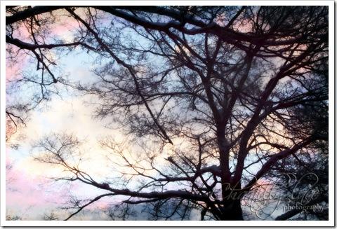 blog_025