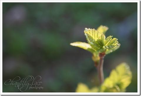 blog_249