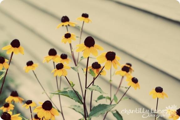 blog_345
