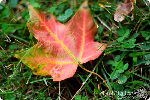 blog_380